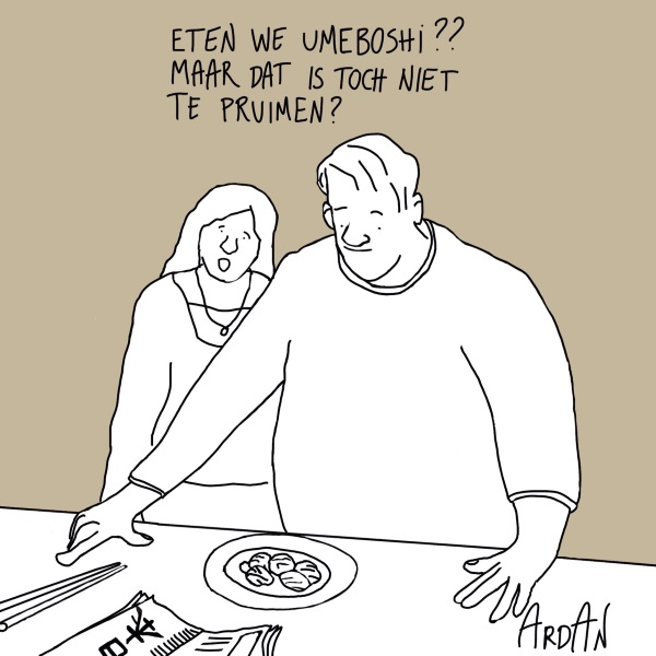 Cartoon Ardan Timmer